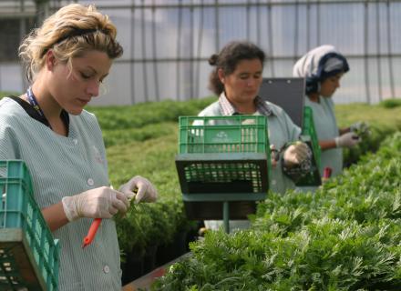 Mujeres trabajadoras migrantes en Colombia. Foto de Rocío Sanz para OIM.