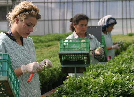 Migrant workers in Colombia. Photo by Rocío Sanz for IOM.